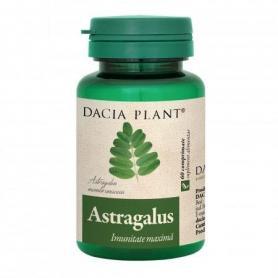 Astragalus, 60 comprimate, Dacia Plant