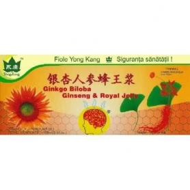 Gingo Biloba & Ginseng & Royal Jelly, Yong Kang